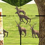 Deer Sniper 2017